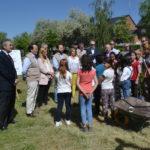 Nuevos arboles en Romacalderas, Villalba. La Sierra con Estilo